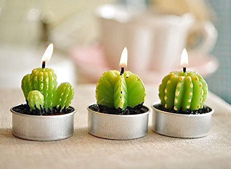 Cactus Candle