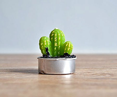 Realistic Cactus Candle