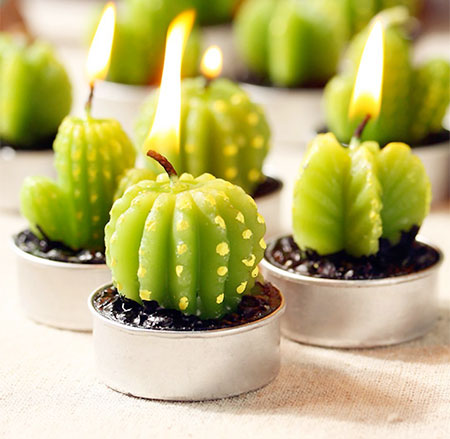 Cacti Candles