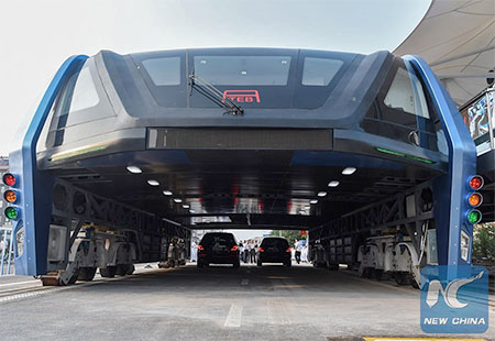 Elevated Air Bus