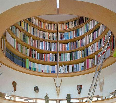 Wade Davis Overhead Library
