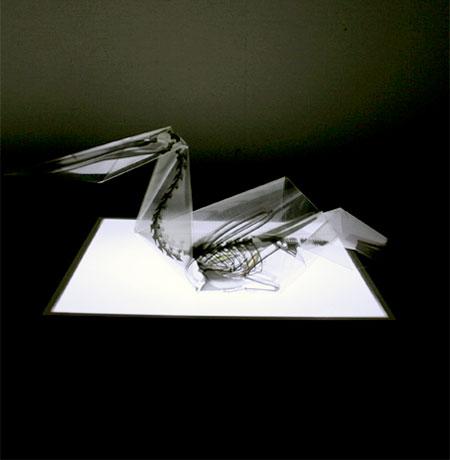 Takayuki Hori X-Ray Origami