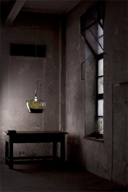 Kristyna Pojerova Lamp