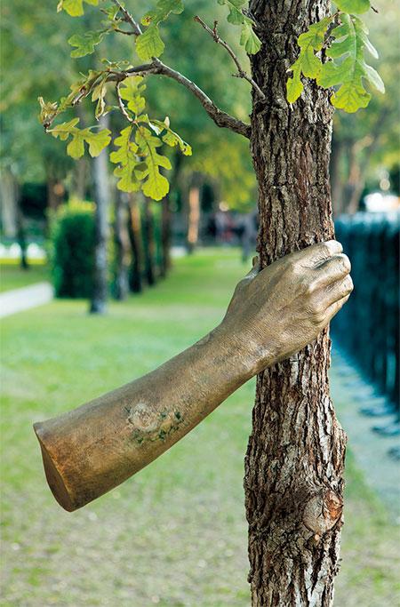 Tree Arm