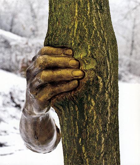 Giuseppe Penone Tree Arm