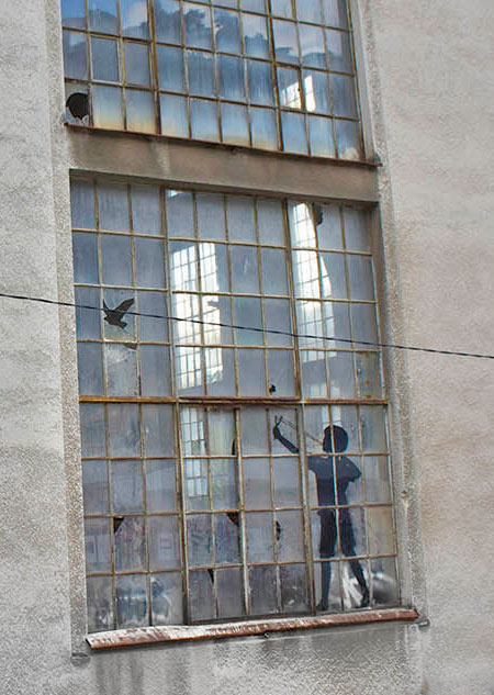 Broken Windows Birds