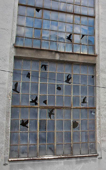 Broken Windows Bird