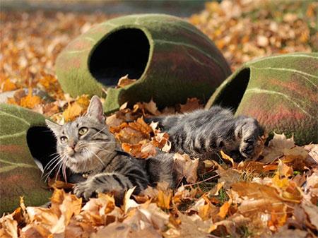 Leaf Pet Bed