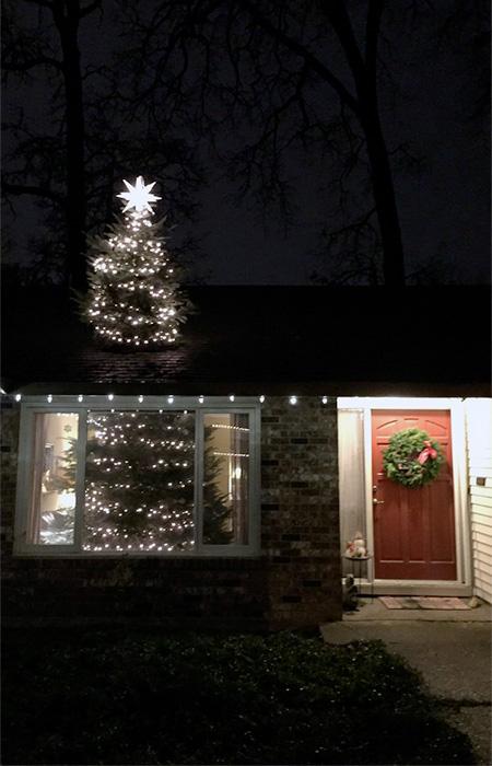 Roof Christmas Tree