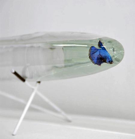 Air 1 Aquarium