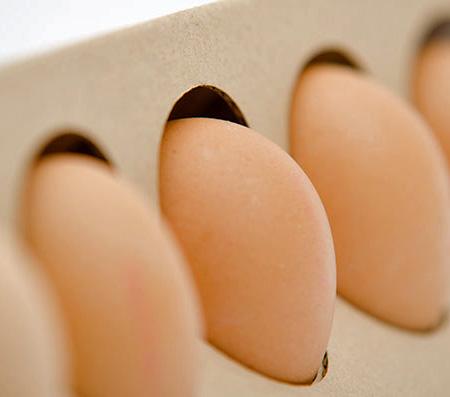 Otilia Erdelyi Egg Packaging