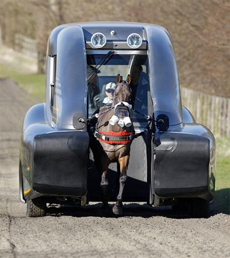 ROUSH Horse Car
