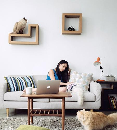 Tetris Cat Bookshelves