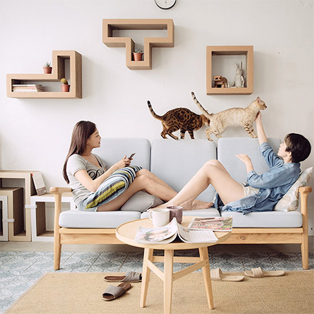 Modular Cat Shelves