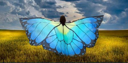 Butterfly Wings Scarves