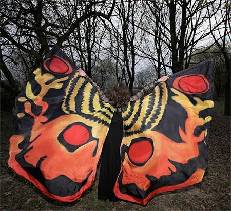 Dorota Drzewiecka Butterfly Wings Scarves
