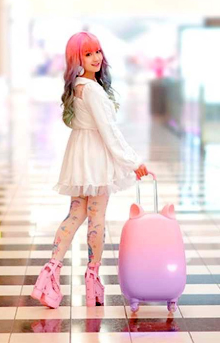 Cat Ears Suitcase