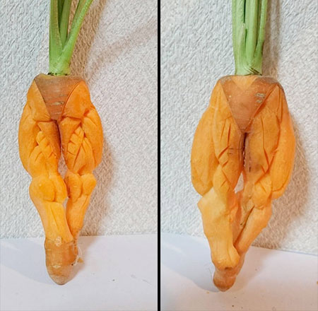Gaku Fruit and Vegetable Carving
