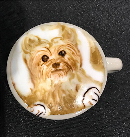 Baristart Latte Art