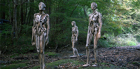 Driftwood Humans