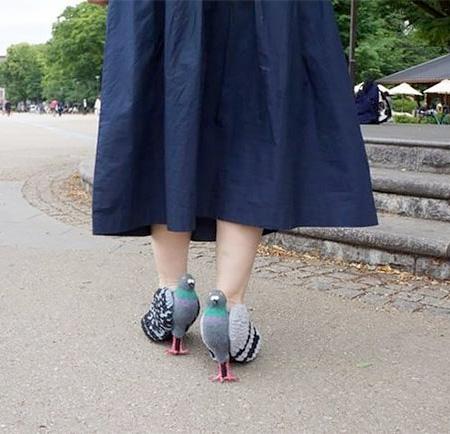 Pigeons Shoe