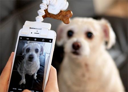 Pet Selfie Phone Attachment