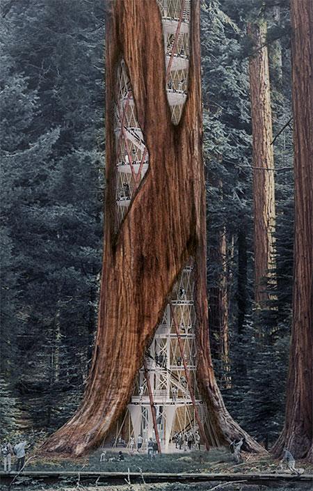 Giant Tree Skyscraper Concept