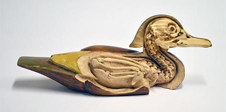 Sculpture Skeletons