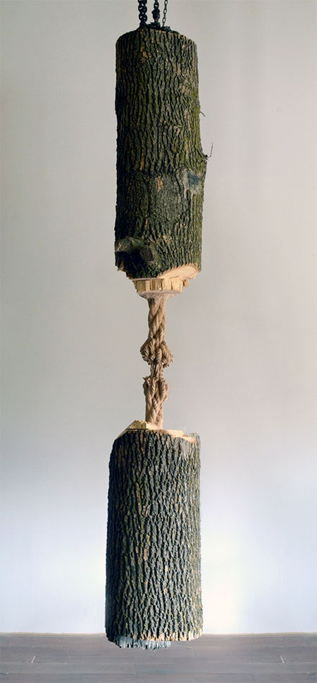 Carved Tree Rope