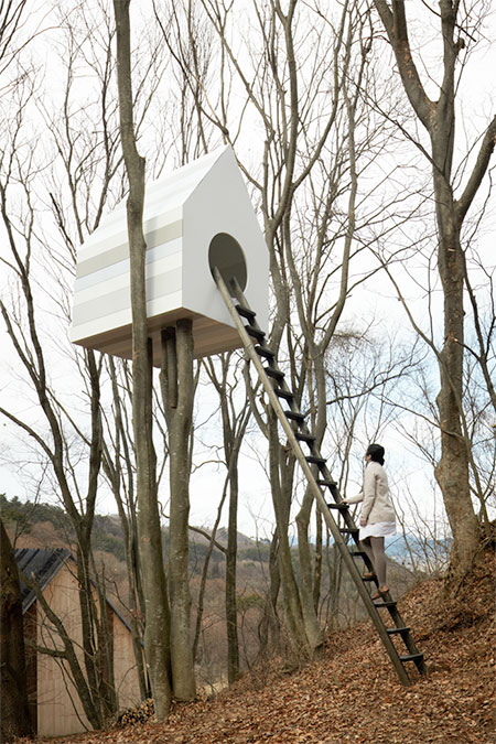 Bird Tree House
