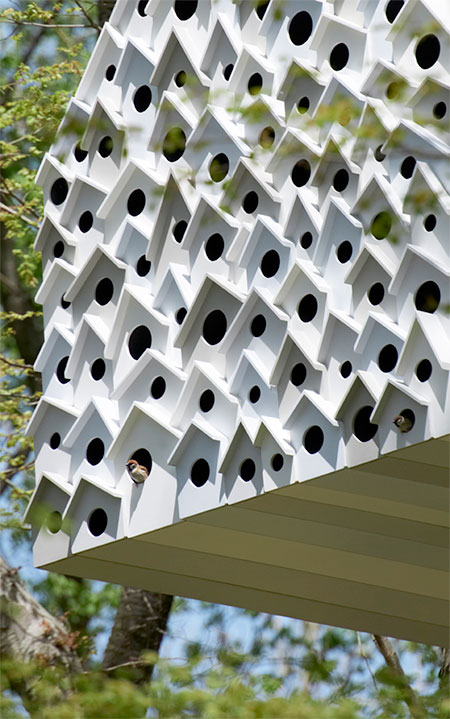 Tree House for Birds