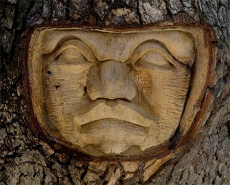 Keith Jennings Tree Spirits