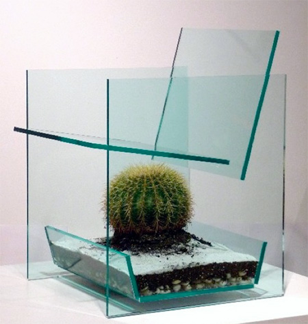 Terrarium Chair