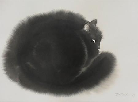 Endre Penovac Cat