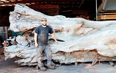JMS Wood Sculpture