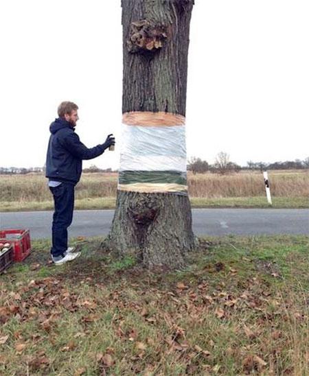 Daniel Siering and Mario Shu Invisible Tree