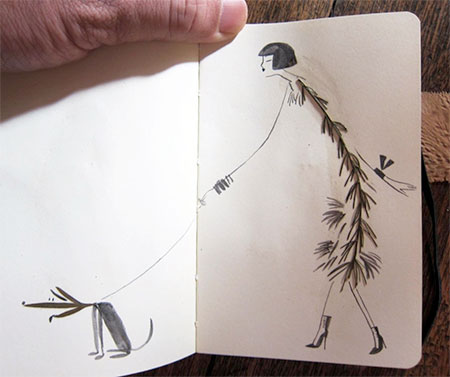 Leaf Illustrations