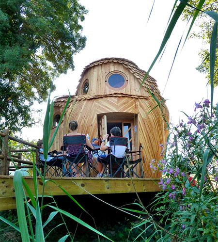 Owl Shaped House