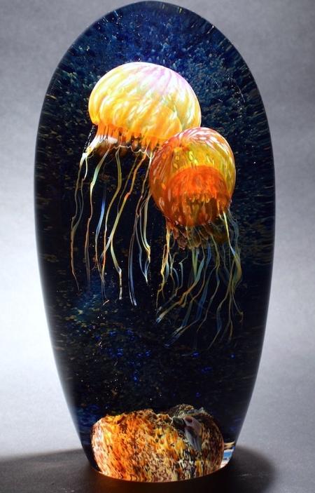 Rick Satava Jellyfish