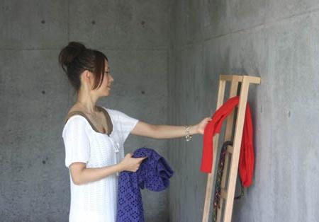 MicroWorks Ladder Mirror