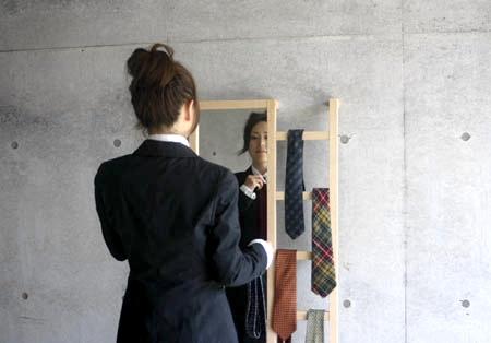 MicroWorks Mirror Ladder