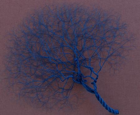 Janaina Mello Landini Tree