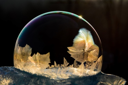 Frozen Ice Bubble