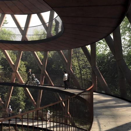 Spiral Treetop Boardwalk