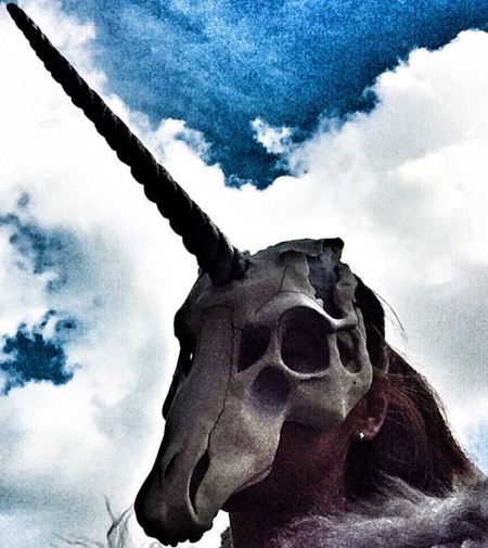 Viktory Unicorn Skull Mask