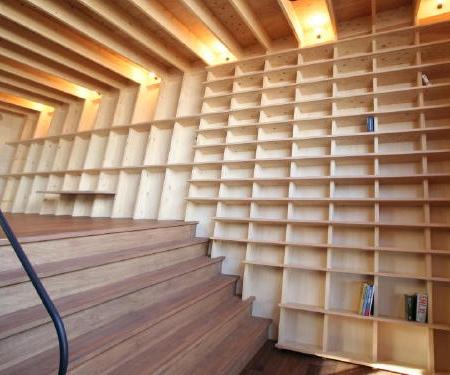 Bookshelf Wall House