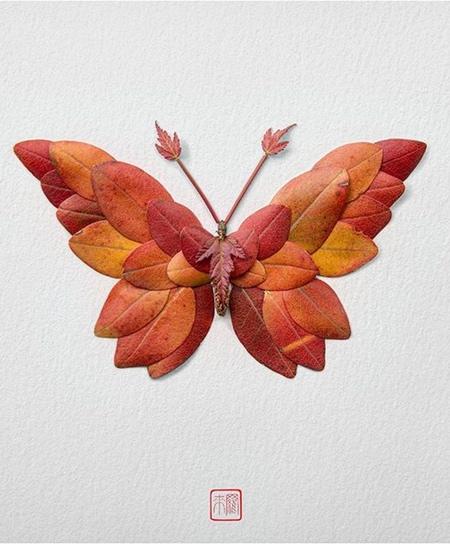 Butterflies Made of Flowers