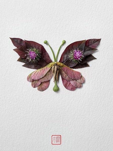 Raku Inoue Butterfly
