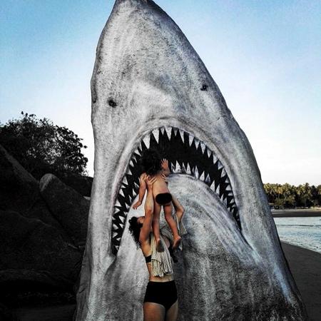 Jimmy Swift Shark Rock