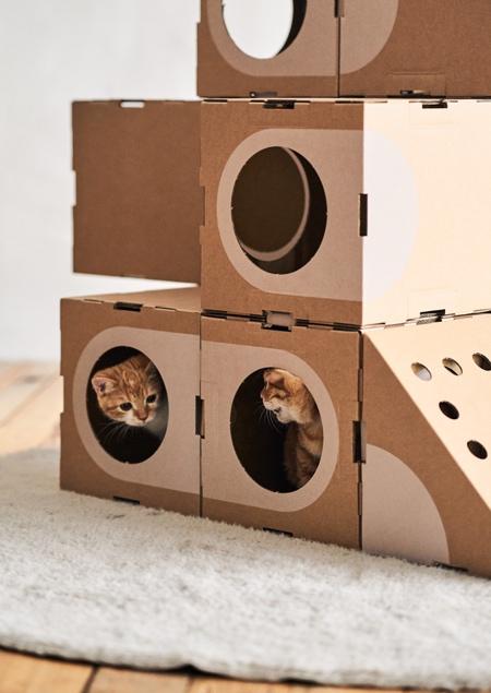 Paper Cat House